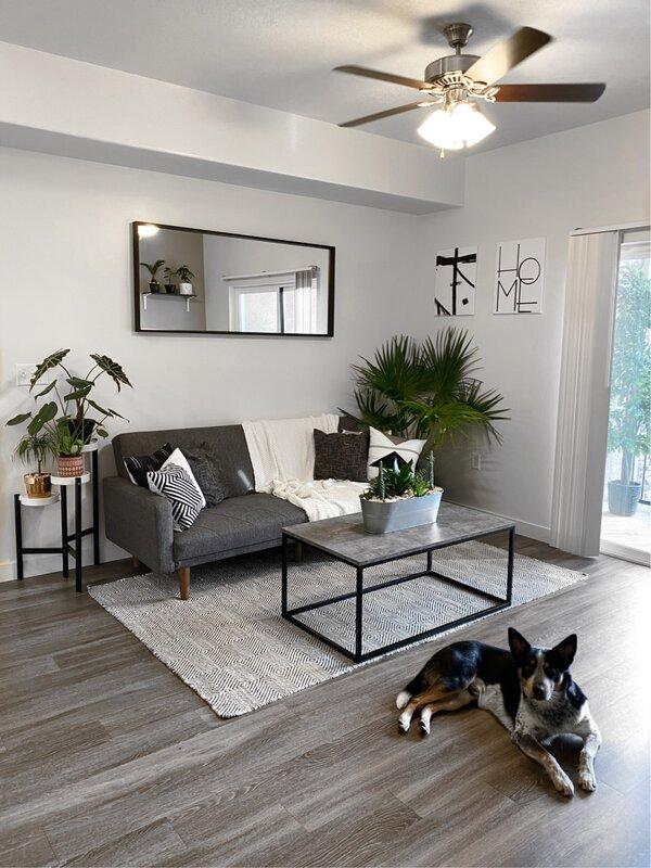 Gray Modern Living Room Design   Van Tuinen Painting
